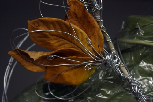 Lúcia Faria, Natureza Transformando